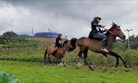 Das 3. Pferdrennen in Sapa