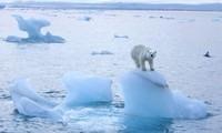 Eröffnung des Online-Klimagipfels