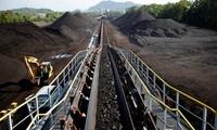 越南国家主席陈大光会见煤炭部门和广宁省代表团
