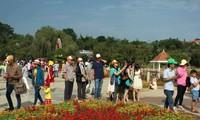 2017年大叻花卉节:六万多人次游客前来参观国际花卉盆景展