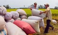 Konferenz der Welternährungsorganisation eröffnet in Hanoi