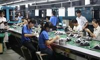 Lederschuhexport erreicht fast 4,8 Milliarden US-Dollar