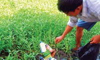 Parlament verabschiedet Gesetz zum Schutz der Pflanzen