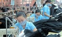 Textilbranche löst Schwierigkeiten in Materialien