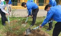 Landesweit wird das Baumpflanzenfest gestartet