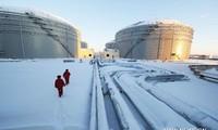 Putin: Russland will führender Energielieferant für Asien sein