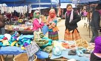 Besuch auf dem Markt Bac Ha zum Jahresanfang