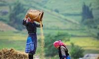 Die Volksgruppe der Mong bewahrt Traditionen