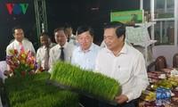 Eröffnung des Reis-Festivals und Veröffentlichung der vietnamesischen Reis-Marke
