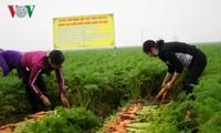 Verbindungen - Schlüssel für Export von Landwirtschaftsprodukten