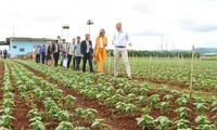 Gespräch über nachhaltige Landwirtschaft und Lebensmittelsicherheit zwischen Vietnam und den Niederlanden