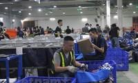 Vietnamesische Unternehmen exportieren Waren von fast 60 Milliarden US-Dollar in vergangenen neun Monaten
