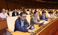 Ausländische Experten schätzen die Verabschiedung des geänderten Arbeitsgesetzbuches durch Vietnam