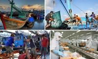 Mühe Vietnams zur Aufhebung der gelben Karte der EU-Kommission gegen IUU-Fischerei