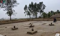 Pfahlfeld aus der Tran-Dynastie in Hai Phong entdeckt