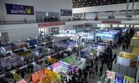 Nordkoreas Wirtschaft wächst gut trotz Sanktionen
