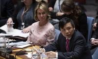 Vietnam begrüßt Initiativen und Mühen zur Wiederherstellung des Nahost-Friedensprozesses