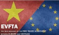 Unternehmer beteiligen sich aktiv an Wandlung der Verpflichtungen des EVFTA in Gesetze