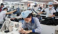 EVFTA hilft bei Kanalisierung von Strömen ausländischer Direktinvestitionen von EU nach Vietnam