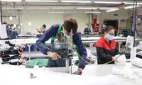 Unternehmen beim Export in die Niederlande helfen