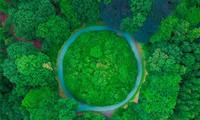 Grüner Klimafonds sagt Entwicklungsländern Hilfe zu