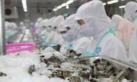 Zwölf vietnamesische Unternehmen dürfen Meeresfrüchte wieder nach Saudi-Arabien exportieren