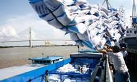 Unternehmen bei Waren-Export nach Afrika helfen