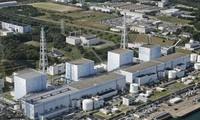 Perusahaan perlistrikan Jepang usul menggerakkan kembali aktivitas 10 reaktor nuklir