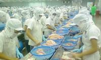 Memperkenalkan industri pengolahan hasil perikanan Vietnam