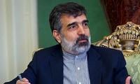 Perundingan Iran-IAEA mencapai kemajuan untuk hari kedua