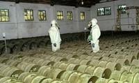 Suriah akan membawa sebagian besar senjata kimia yang berbahaya ke luar dari wilayah negara ini sebelum 1 Maret