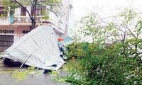 Ada 4 orang tewas dan 2 orang lain hilang dalam taufan Rammasun