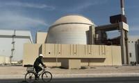 IAEA: Iran menunjukkan lagi gerak-gerik positif dalam menaati permufakatan nuklir sementara