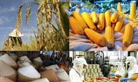 Produk pertanian Vietnam punya banyak kesempatan untuk memasuki pasar Singapura