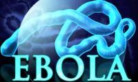PBB menilai bahwa bisa memadamkan wabah Ebola