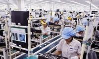 Nilai perdagangan Vietnam-Brasil untuk pertama kalinya melampaui USD 3 miliar