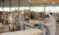 MN Vietnam membahas RUU mengenai  Keselamatan dan Kebersihan Kerja