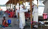 Afrika berbagi pengalaman dalam mencegah dan memberantas wabah Ebola
