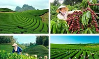 Meningkatkan hasil-guna pengelolaan dan penggunaan tanah di semua usaha pertanian negara dan usaha kehutanan negara