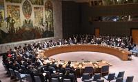 PBB menjunjung tinggi peranan kaum pemuda dalam menegakkan perdamaian, mencegah dan menangani bentrokan