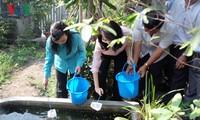 Kementerian Kesehatan Vietnam mencanangkan kampanye penanggulangan wabah penyakit akibat virus Zika dan demam berdarah