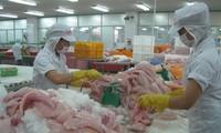 Ada 23 basis bisnis ikan patin Vietnam yang mempunyai cukup syarat untuk melakukan ekspor ke AS