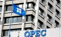 OPEC dan para produsen minyak besar sepakat melakukan pertemuan tentang usaha menstabilkan harga minyak