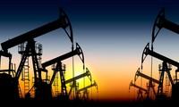Iran mengimbau kepada negara-negara eksportir minyak tambang supaya memperkuat kerjasama