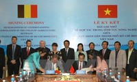 Kota Ho Chi Minh dan provinsi Flanders (Belgia) melakukan kerjasama di bidang pertanian