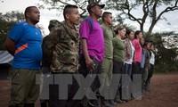 FARC membentuk partai politik
