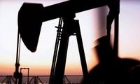 OPEC meningkatkan prediksi tentang kebutuhan minyak tambang global tahun 2017