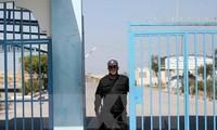 Mesir mendorong penanganan krisis di kawasan Timur Tengah