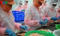 Bermacam jenis barang ekspor Vietnam mencapai hasil positif