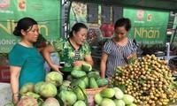 Pekan buah kelengkeng dan hasil pertanian yang aman Provinsi Son La di Kota Ha Noi